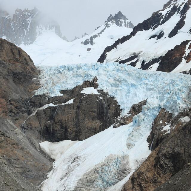 """""""Piedras Blancas glacier, Los Glaciares National Park, Argentina"""" stock image"""