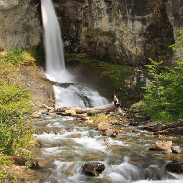 """Chorrillo del Salto waterfall, Los Glaciares National Park, Patagonia"" stock image"