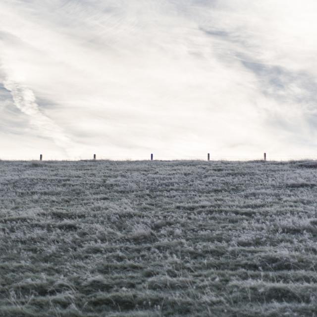 """""""Frosty horizon"""" stock image"""