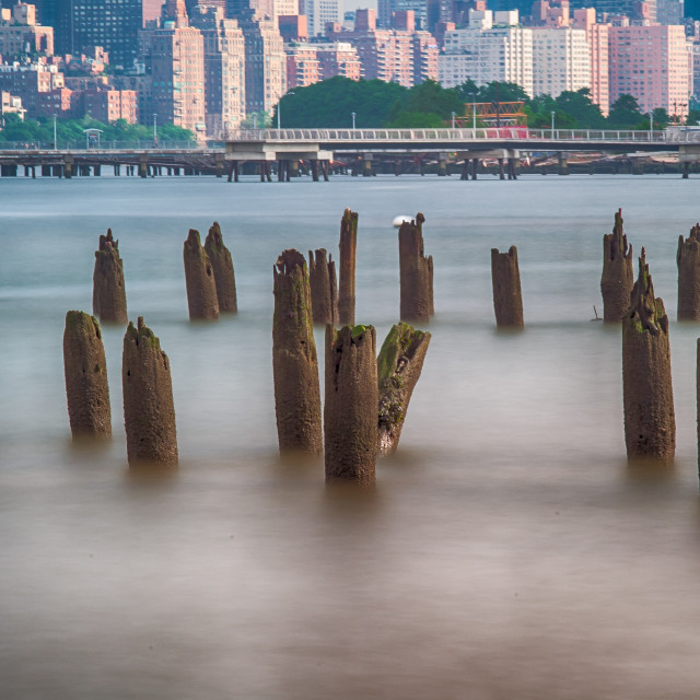 """""""Old Dock Stumps in the East River"""" stock image"""