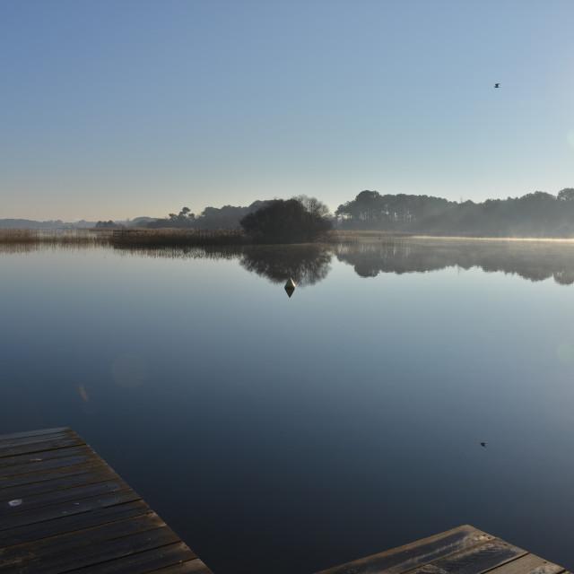 """Morning at sunrise over Lake Biscarosse, France, Europe."" stock image"