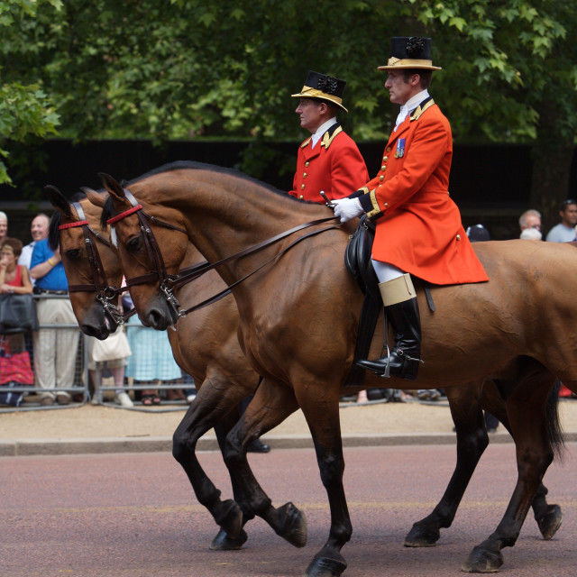"""Trooping of the Color, London"" stock image"