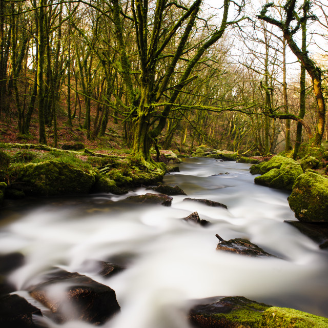 """Waterfall, Golitha Falls, Cornwall"" stock image"