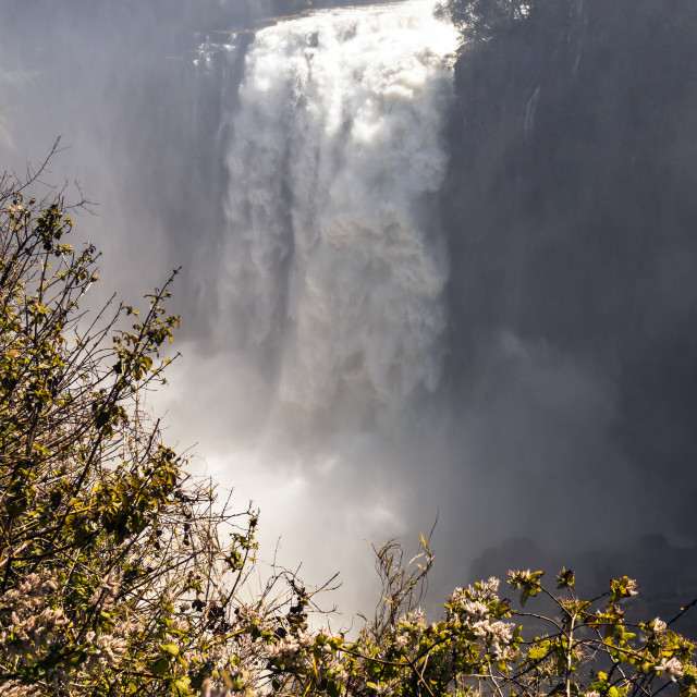 """""""Victoria Falls - Devil's Cataract"""" stock image"""