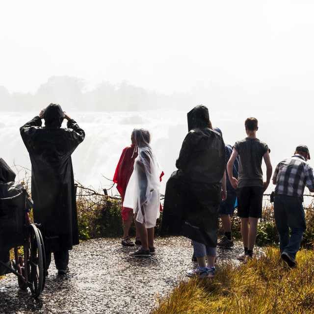 """A wet View of Victoria Falls"" stock image"