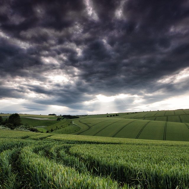 """Storm clouds over crops"" stock image"