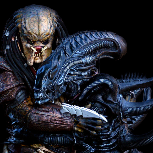 """Aliens vs Predator"" stock image"
