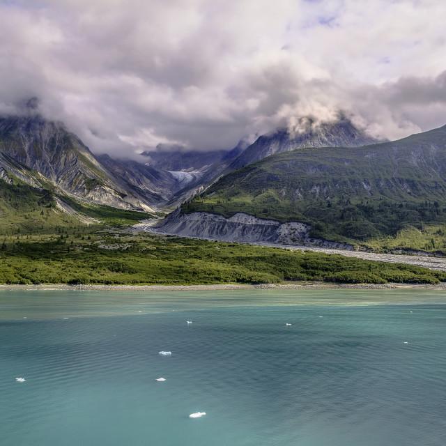 """""""Glacier Bay Alaska"""" stock image"""