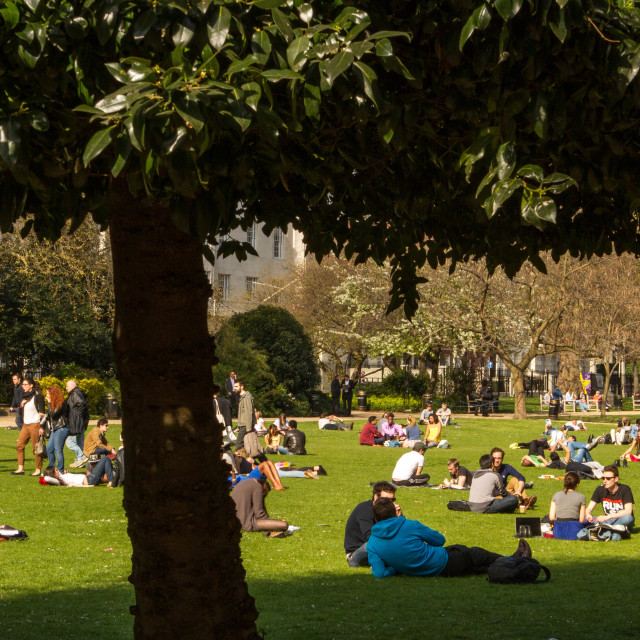 """lazing around at lincolns inn fields"" stock image"