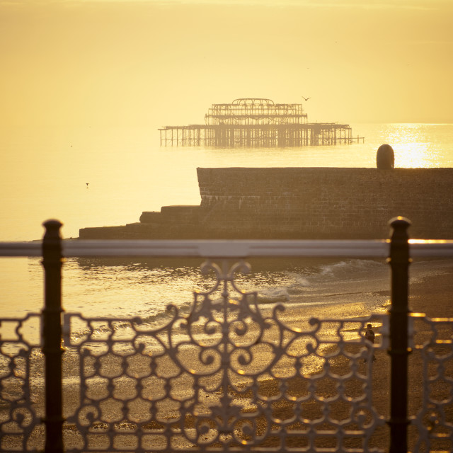 """View of The West Pier from The East Pier , Brighton Beach5"" stock image"