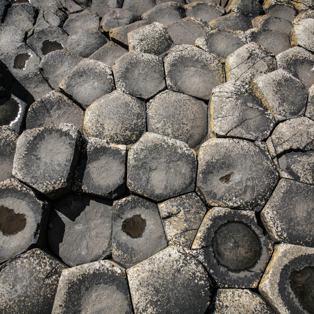 """""""Giant's Causeway Stones"""" stock image"""