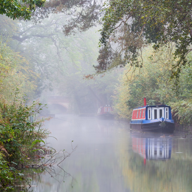"""The Basingstoke Canal"" stock image"