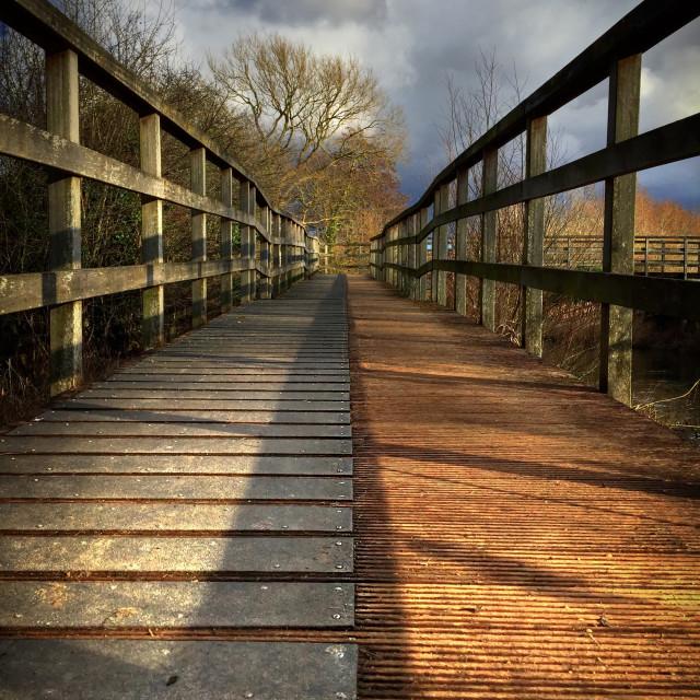"""""""Two Tone Bridge"""" stock image"""