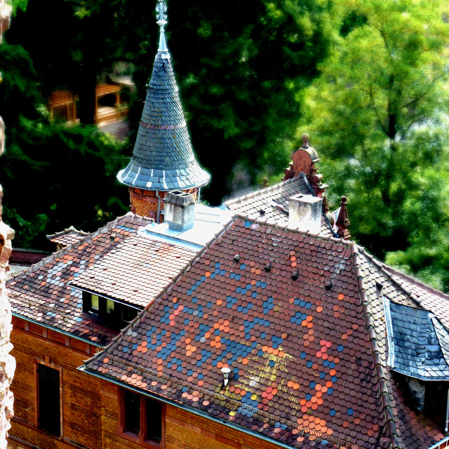 """Heidelberg Roof"" stock image"