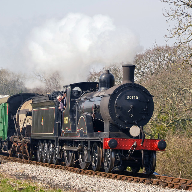"""""""Branchline Train"""" stock image"""