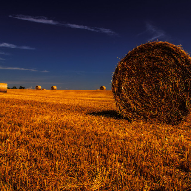 """Hay Bales Under the Sun"" stock image"