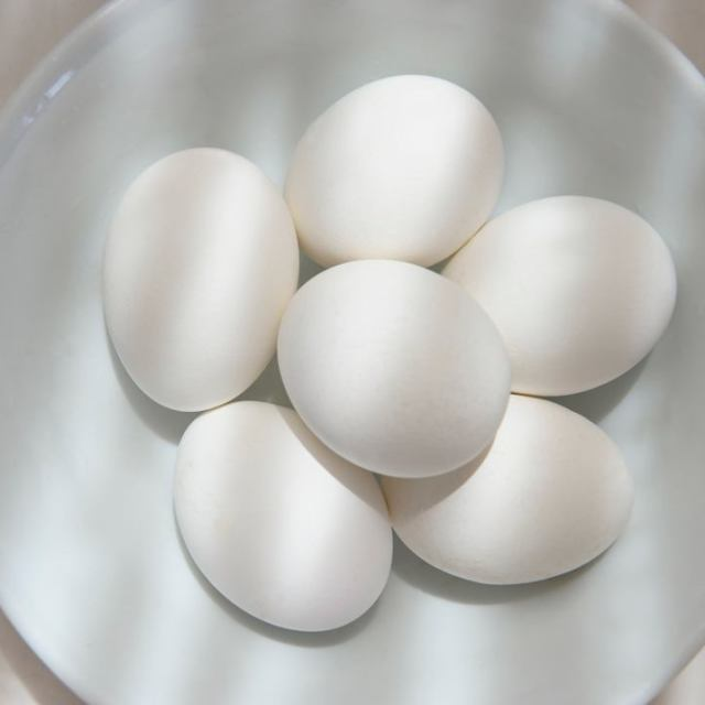 """White eggs in a white bowl"" stock image"