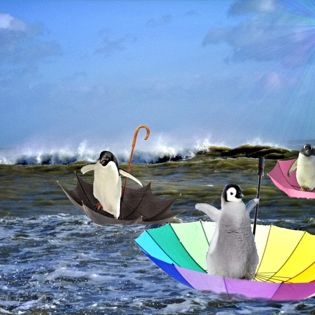 """Penguin Invasion"" stock image"