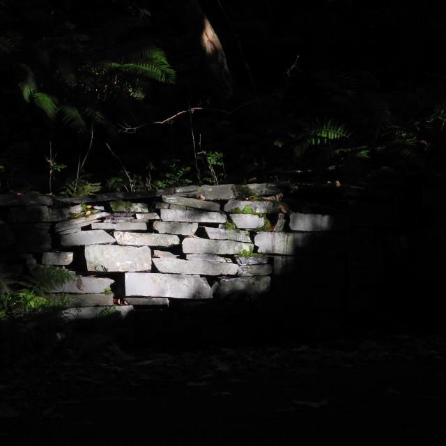 """Wall Light"" stock image"