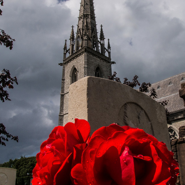 """Church View with Rose."" stock image"