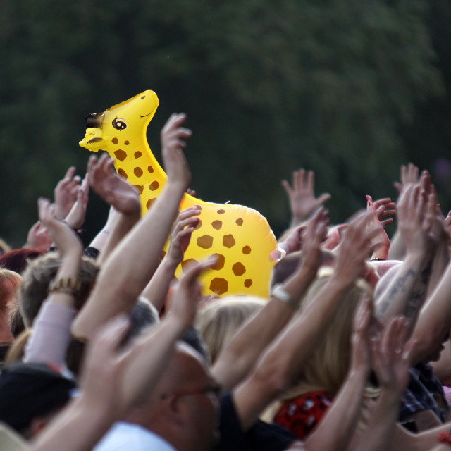 """Concert Crowd Inflatable Giraffe"" stock image"