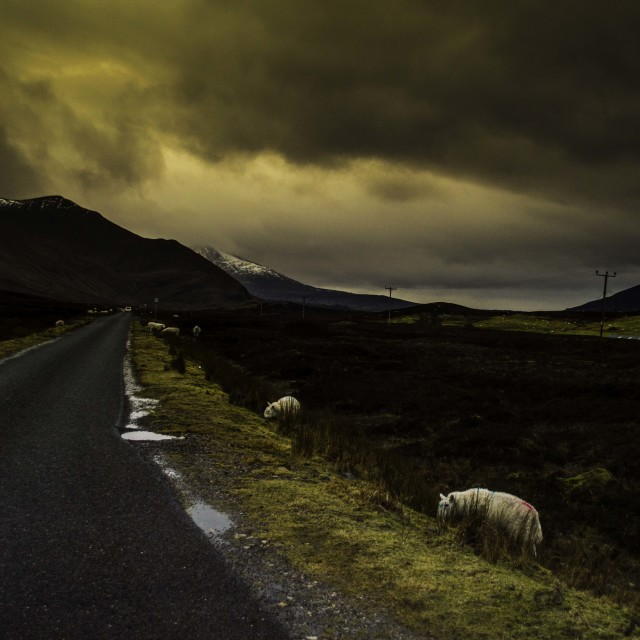 """""""The Road"""" stock image"""