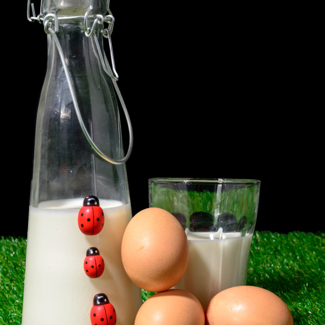 """""""milk and egg"""" stock image"""
