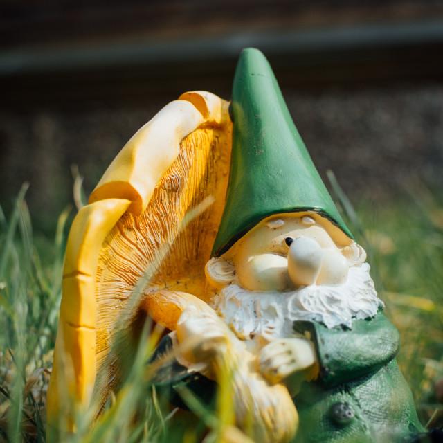 """""""Garden Gnome"""" stock image"""