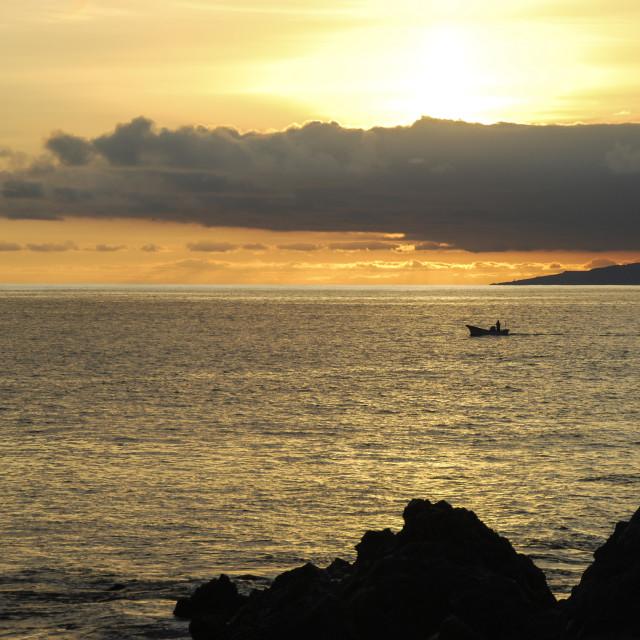 """Tenerife fishing"" stock image"