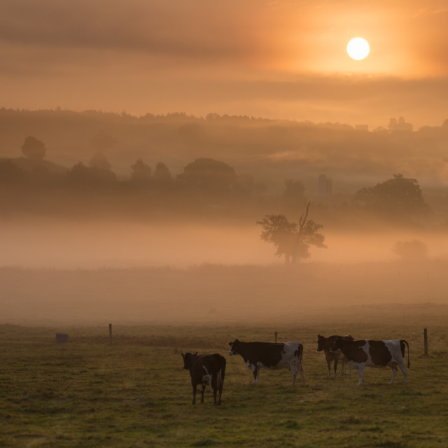 """Sunrise, Shropshire"" stock image"