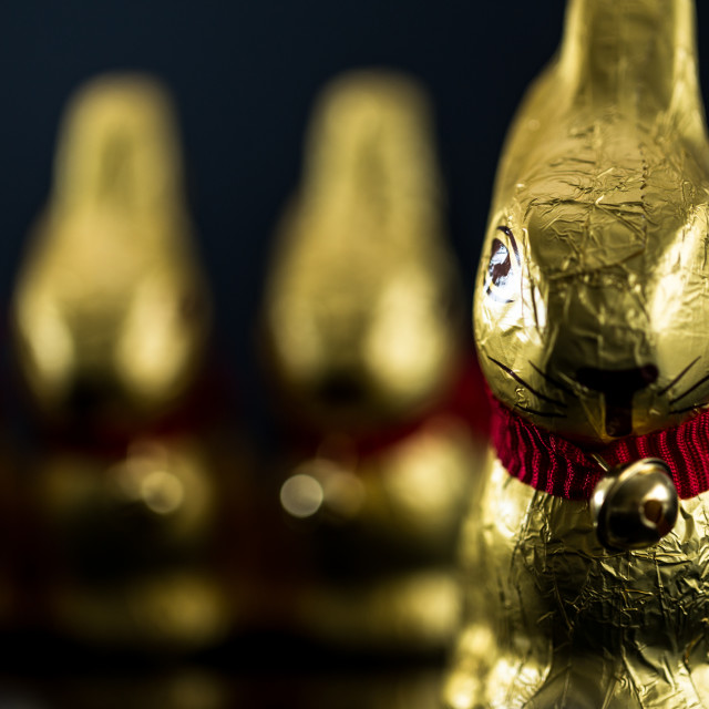 """Chocolate Easter Bunnies"" stock image"