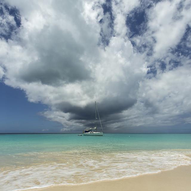"""Deadwood Beach Antigua"" stock image"
