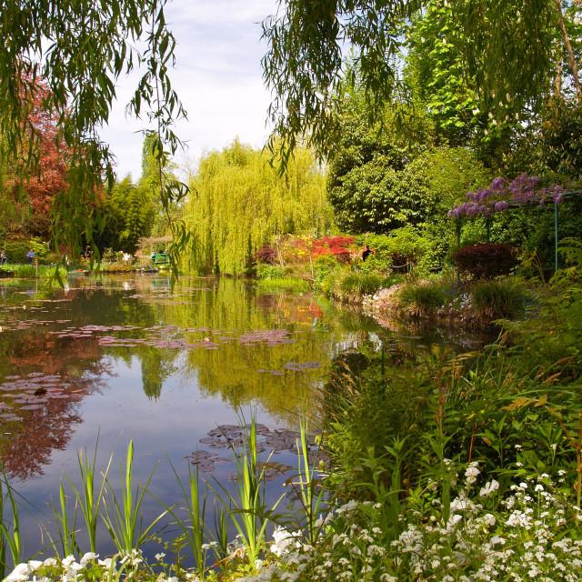 """Spring Water-Garden"" stock image"