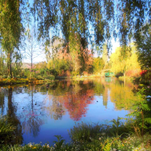 """Dreamy Water-Garden"" stock image"