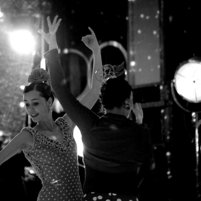 """""""Flamenco on stage II."""" stock image"""