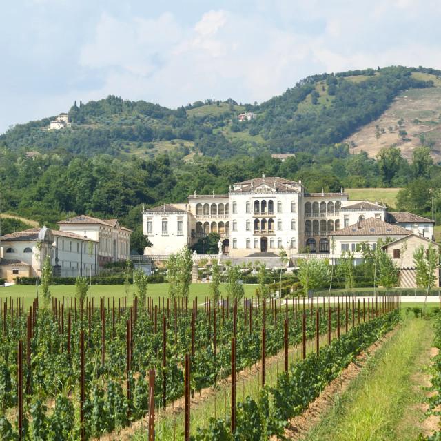 """""""Italian Villa Rinaldi Barbini"""" stock image"""