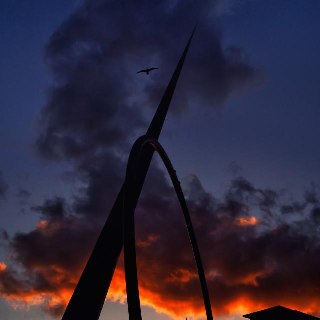 """Sunset & Seagull"" stock image"
