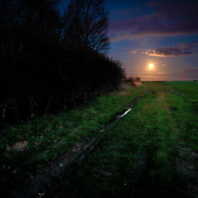 """""""Magical Pathway to the Moon"""" stock image"""
