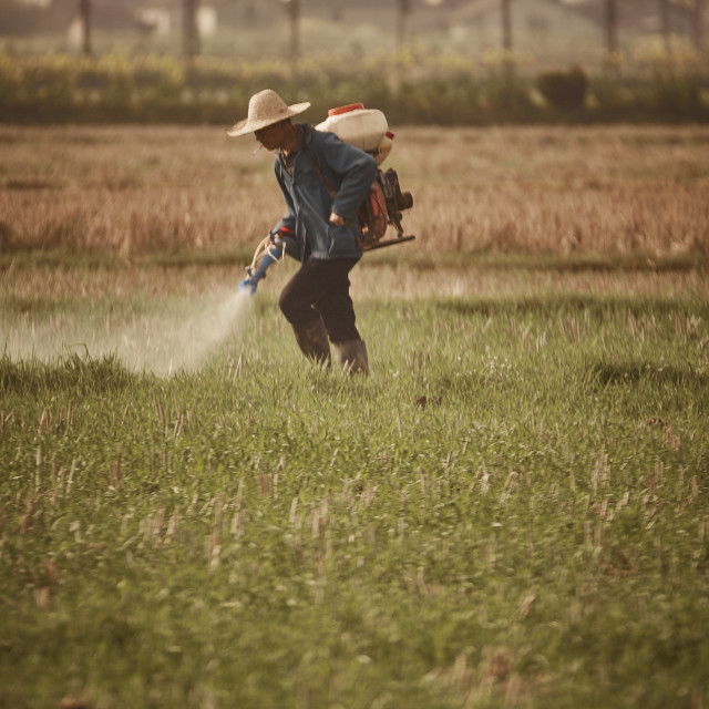 """Pesticide spraying"" stock image"