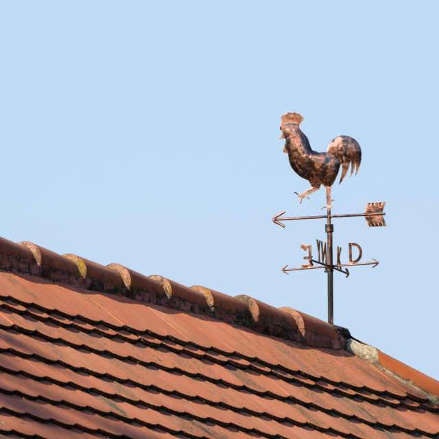 """Copper Weathercock on the Rooftop"" stock image"