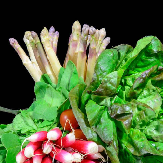 """""""various seasonal vegetables"""" stock image"""