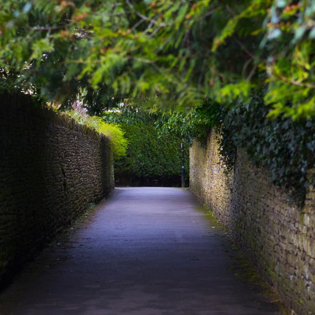 """Pathway"" stock image"