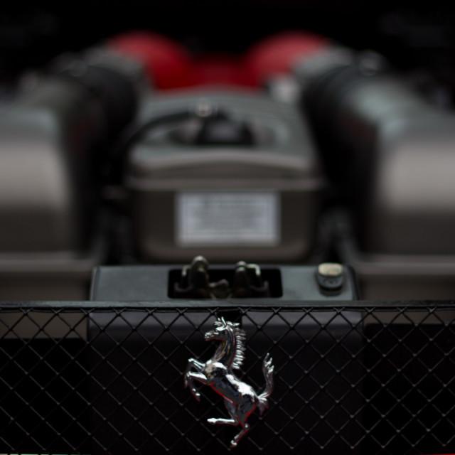 """""""Horsepower"""" stock image"""