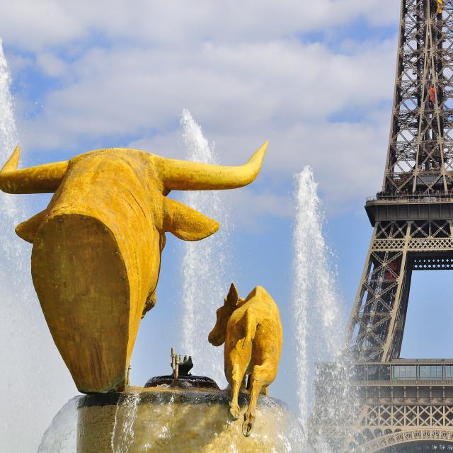 """Trocadero Fountain"" stock image"