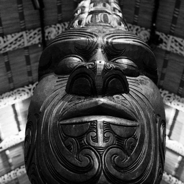 """""""Maori Warlord"""" stock image"""