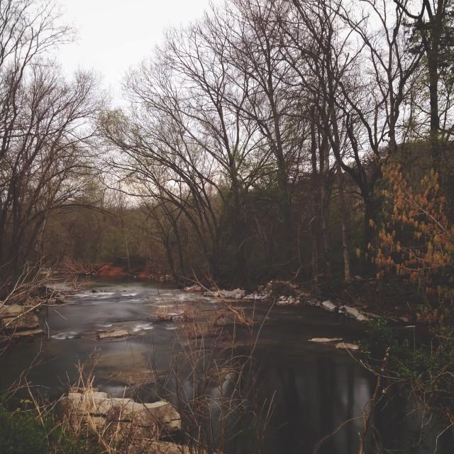 """creek bend"" stock image"