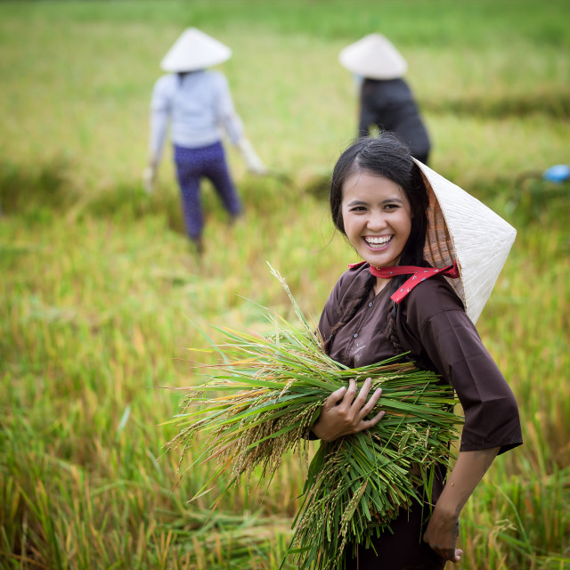 """farmer working in the farm with big smile"" stock image"
