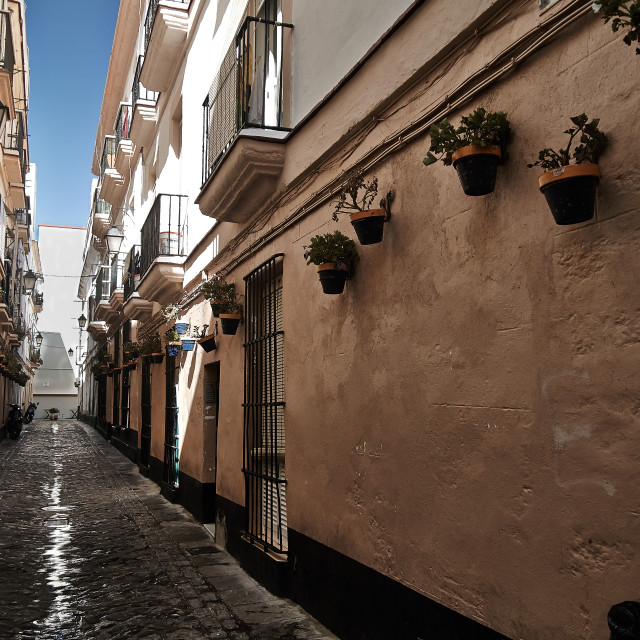 """Side street, Cadiz"" stock image"