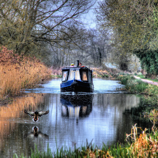 """Cruising along the canal"" stock image"