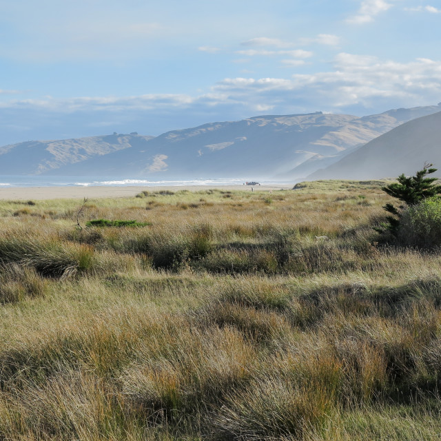 """""""Pacific coastline, N.Z."""" stock image"""